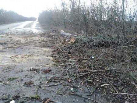 Сильний вітер пошкодив дорожні знаки на Кіровоградщині. ФОТО