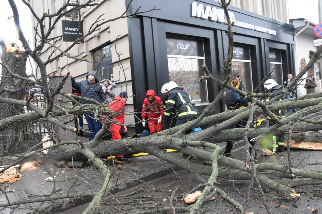 Без Купюр Кропивничанка, на яку впало дерево, знаходиться в лікарні в задовільному стані Події  Сергій Коваленко обвалилося дерево 2020 рік