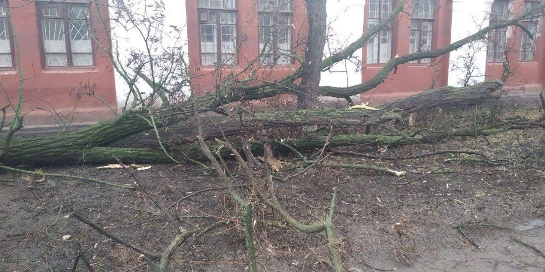 Без Купюр Зірвані білборди, повалені дерева та одна постраждала - наслідки стихії в Кропивницькому й області. ФОТО Головне  стихія 2020 рік