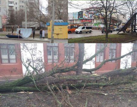 У Кропивницькому вантажівка з дровами і несправними гальмами наламала дров, врізавшись у дерево. ФОТО