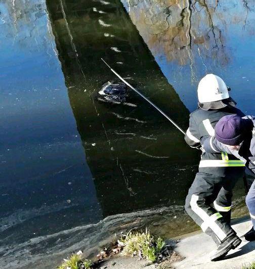 Без Купюр Кропивницький: в Інгулі знайшли потопельника Події  потопельник Інгул 2020 рік
