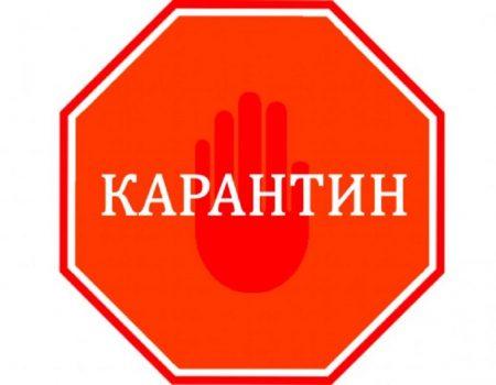 Кропивничан запрошують відсвяткувати Івана Купала та взяти участь у благодійній акції