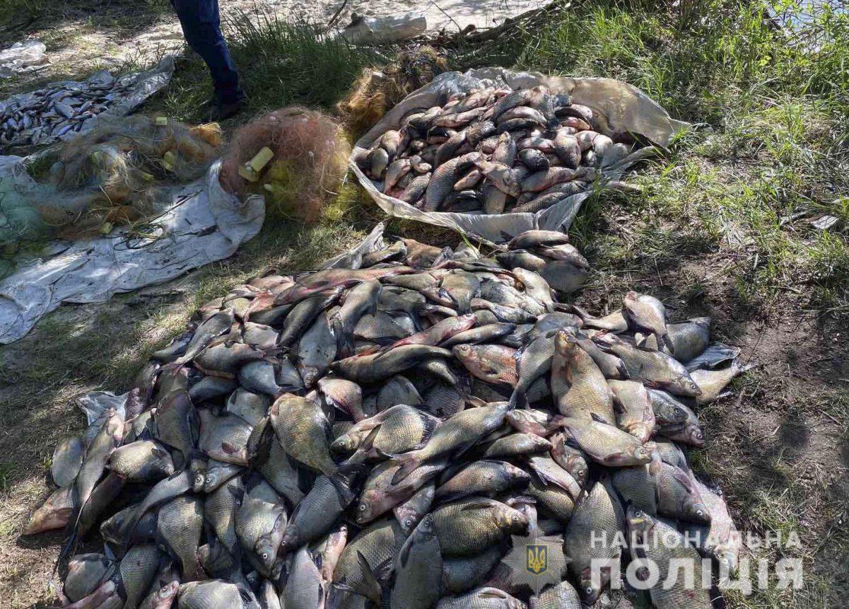 Без Купюр Двоє браконьєрів зі Світловодського району попалися в нерест на вилові риби в промислових масштабах Кримінал  риба нерест браконьєри 2020 рік