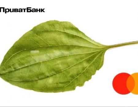 Форум для програмістів по написанню штучного інтелекту відбудеться в Кропивницькому