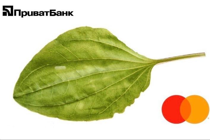 """Без Купюр Інтернет-банкінг """"Приват24"""" сьогодні працює зі збоями Україна сьогодні  ПриватБанк збої 2020 рік"""