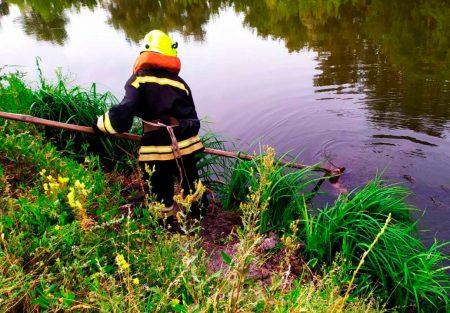 В Олександрії рятувальники дістали з річки тіло загиблого чоловіка