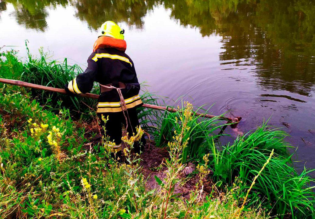 Без Купюр В Олександрії рятувальники дістали з річки тіло загиблого чоловіка Події  потопельник Олександрія 2020 рік