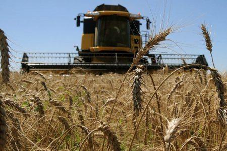 500 тис. грн на 5 років: фермерські господарства Кіровоградщині можуть отримати кредити