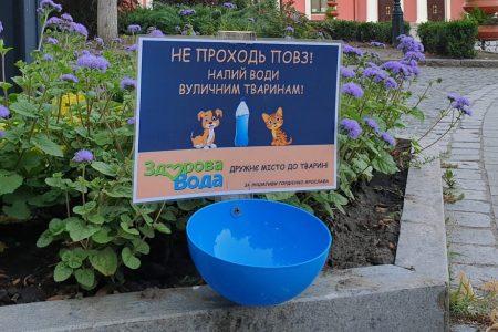 """На вулицях Кропивницького встановили """"поїлки"""" для бездомних тварин. ФОТО"""