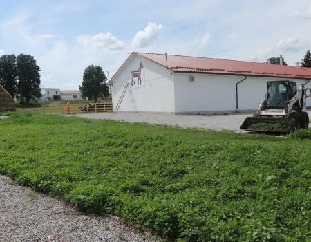Де виробляють молоко богів та як прижилися альпійські кози на Кіровоградщині. ФОТО. ВІДЕО