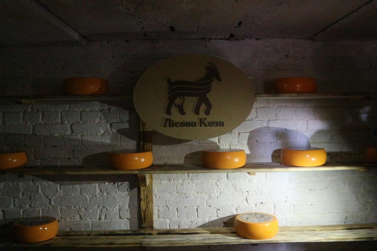 Де виробляють молоко богів та як прижилися альпійські кози на Кіровоградщині. ФОТО 8