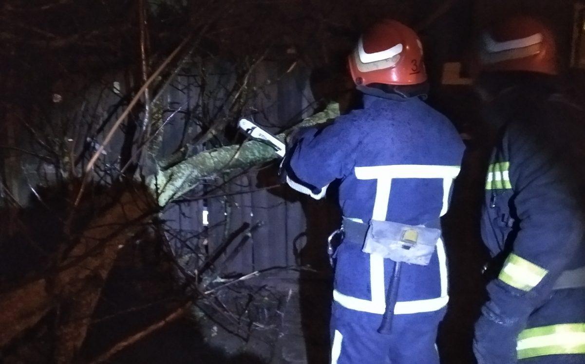 Без Купюр У Кропивницькому дерево впало на проїжджу частину За кермом  рятувальники новини негода дерево 2020 рік