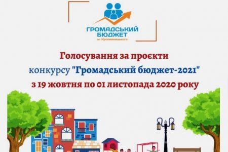У Кропивницькому до конкурсу «Громадський бюджет-2021» допустили 55 проєктів
