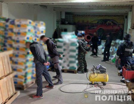 Де на Кіровоградщині продаватимуть ялинки