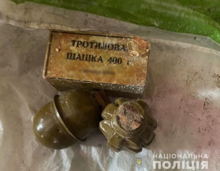У жителя Кропивницького правоохоронці вилучили близько 200 боєприпасів