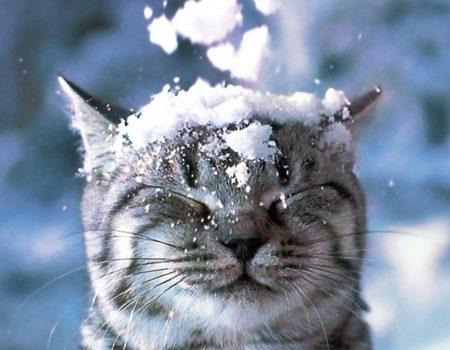 Синоптики знову попередили про погіршення погоди на Кіровоградщині