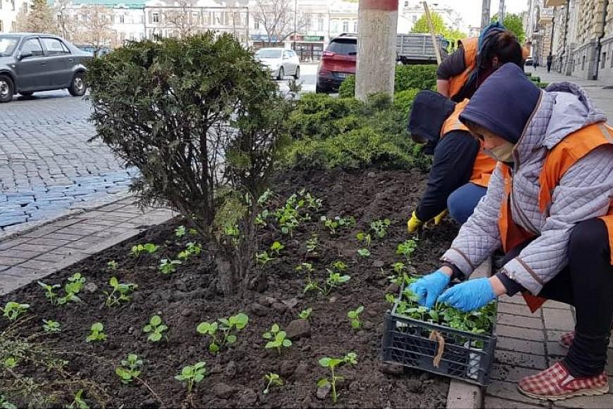 Без Купюр У Кропивницькому висадили більше 2 тисяч квітів Життя  новини Кропивницький Кіровоградщина Благоустрій 2021 Квітень