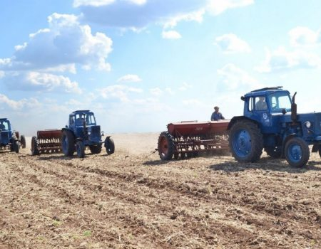 Аграрії Кіровоградщини засіяли 57% ранніх зернових і зернобобових культур