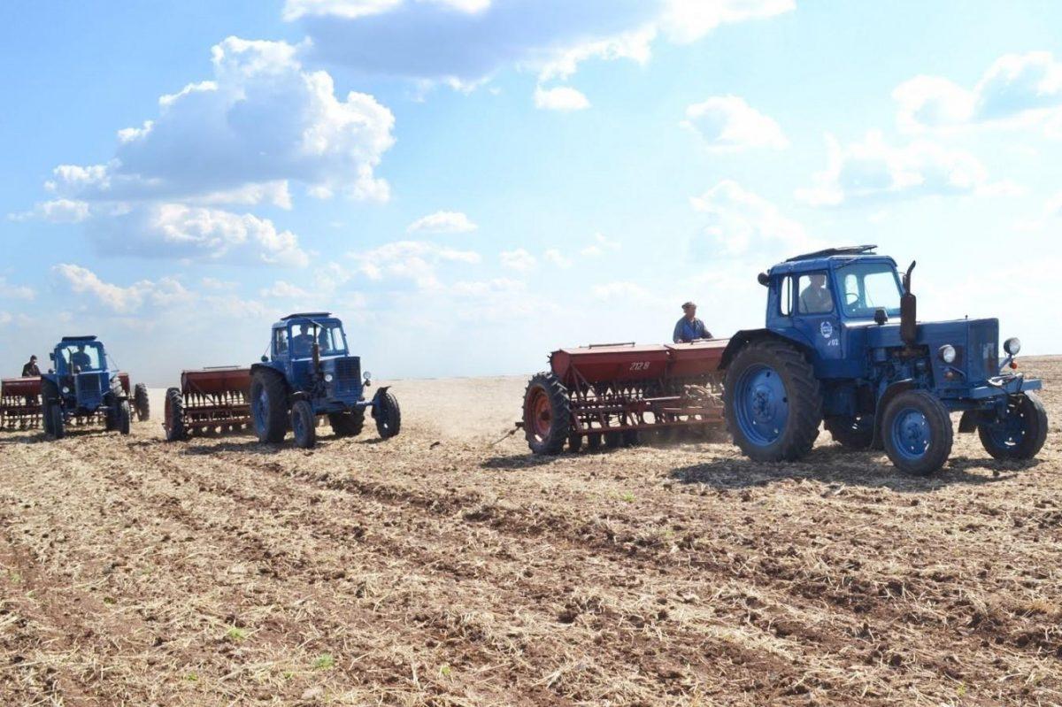 Без Купюр Аграрії Кіровоградщини засіяли 57% ранніх зернових і зернобобових культур Бізнес  посівна новини Кіровоградщина 2021 Квітень