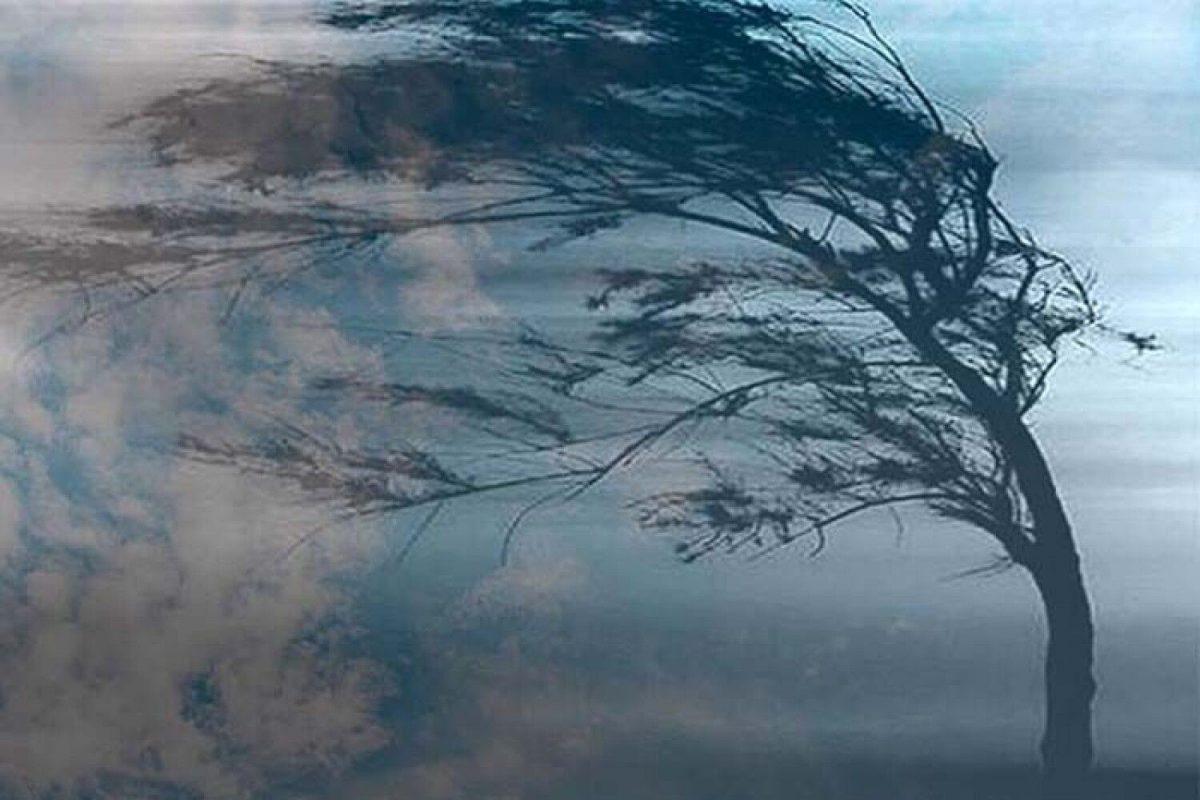 Без Купюр Синоптики оголосили штормове попередження в Кропивницькому і області Життя  штормове попередження новини Кропивницький Кіровоградщина 2021 Квітень