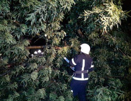 Негода на Кіровоградщині: горіли щитові, дерева падали на авто і будинки. ФОТО