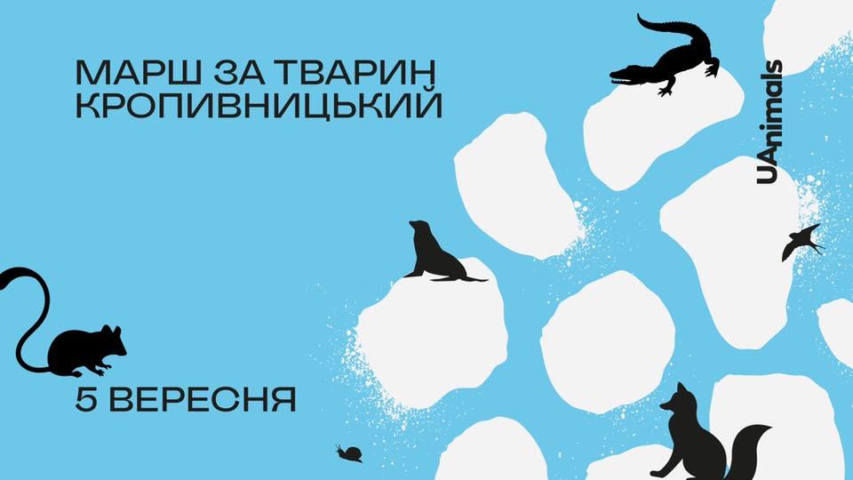 Без Купюр Зоозахисники Кропивницького вийдуть на Всеукраїнський марш за тварин Події  новини марш за тварин Кропивницький Кіровоградщина 2021 рік